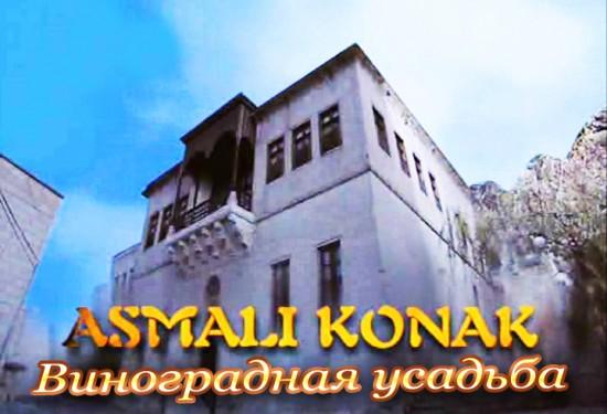 Виноградная усадьба / Asmali konak (Сериал, Турция)