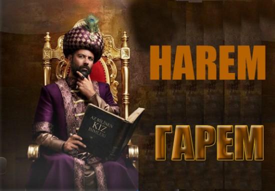 Гарем / Harem (Сериал, Турция)