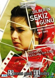 dilber_in_sekiz_guenue_poster