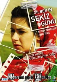 dilber_in_sekiz_guenue_poster