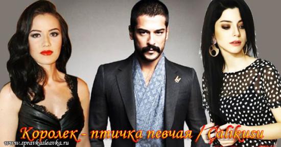 Королек - птичка певчая / Calikusu 2013 (Сериал, Турция)