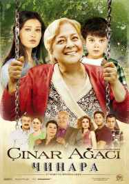 Чинара / Çinar agaci, poster