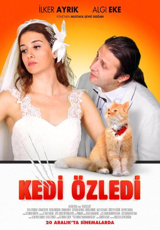 Кошки были пропущены / Kedi Özledi, poster