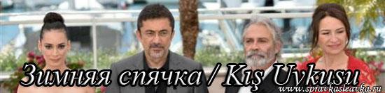 Зимняя спячка / Kış Uykusu, фильм, Турция