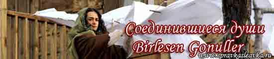 Турецкий фильм - Соединившиеся души / Birlesen Gonuller, 2014 год