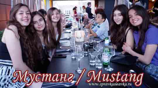 Турецкий фильм - Мустанг