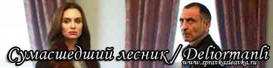 Турецкий фильм Сумасшедший лесник / Deliormanli (2016)