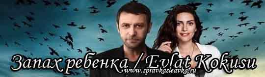 Турецкий сериал Запах ребенка / Evlat Kokusu (2017)