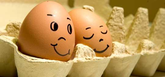 2-3 яйца каждый день