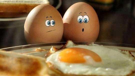 Что будет, если есть два яйца в день (каждый день)