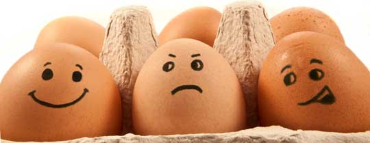 2 яйца в день. Польза или вред?